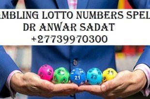 Gambling Lotto Numbers
